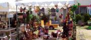View the Album: 2002 Orange County Fair  59 images